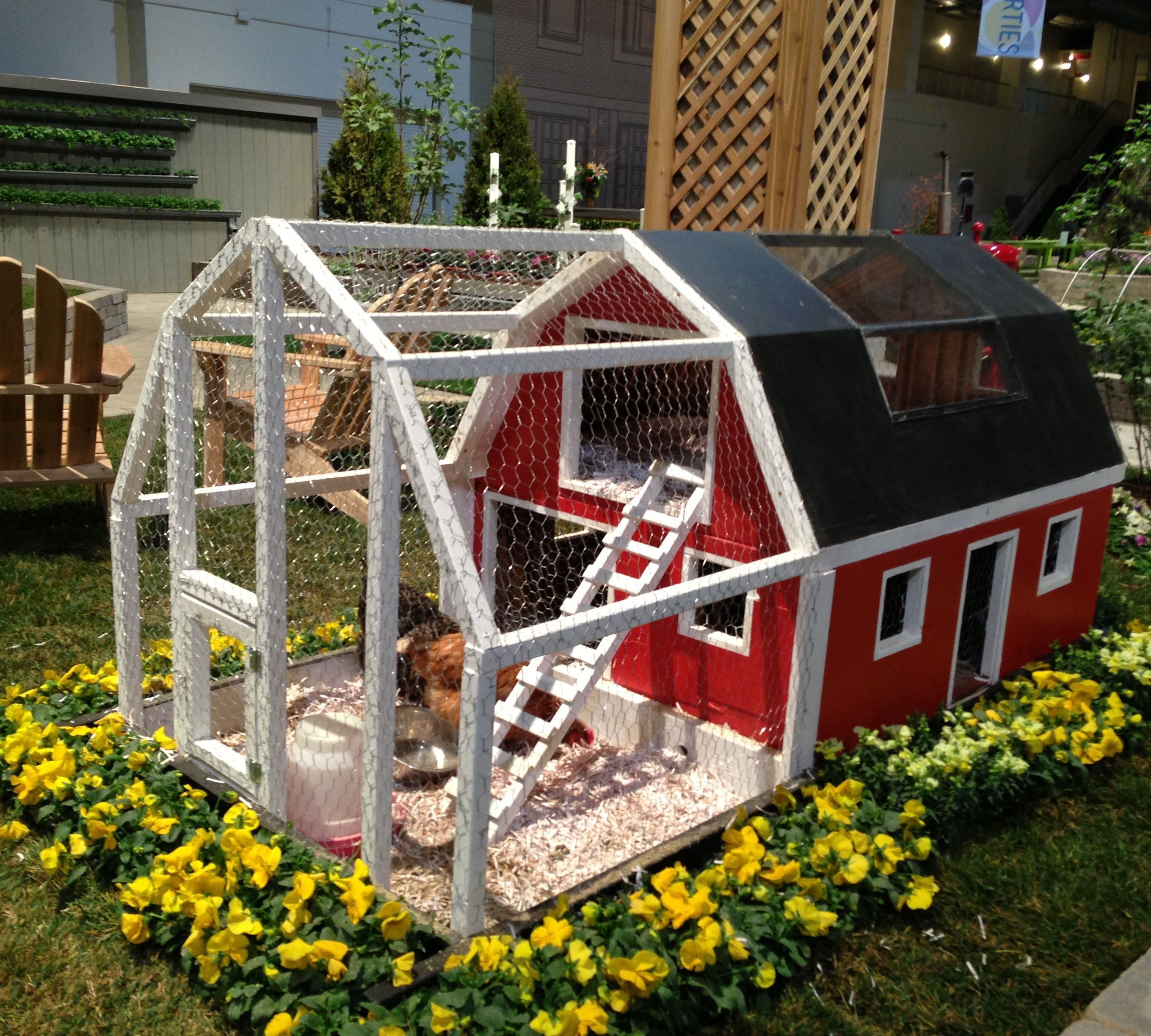 A Bright Red Barn-style Chicken Coop