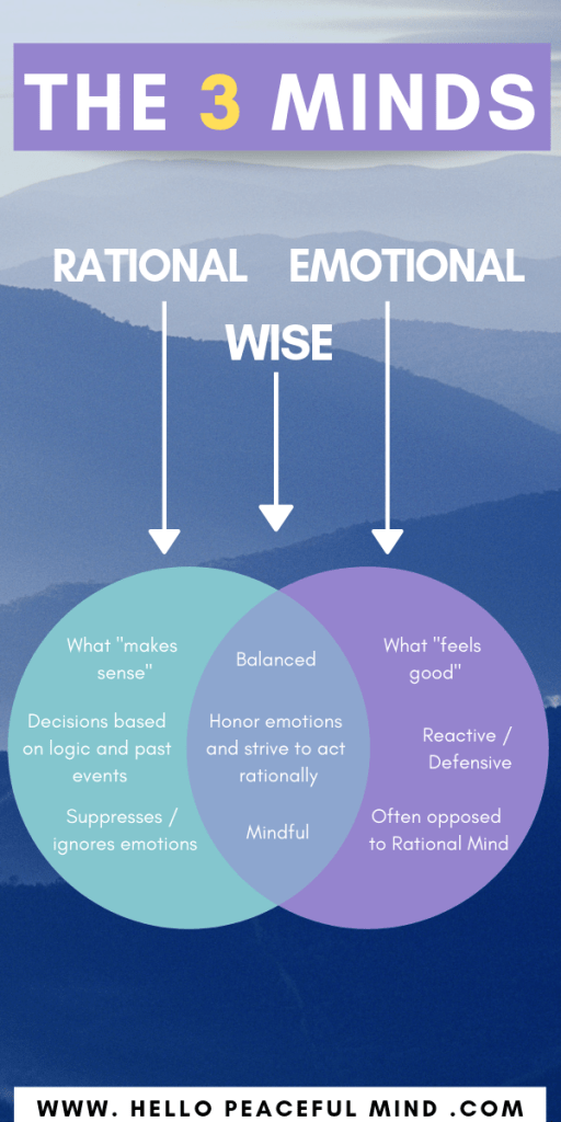 The 3 Minds: Emotional, Rational, and Wise | Hello
