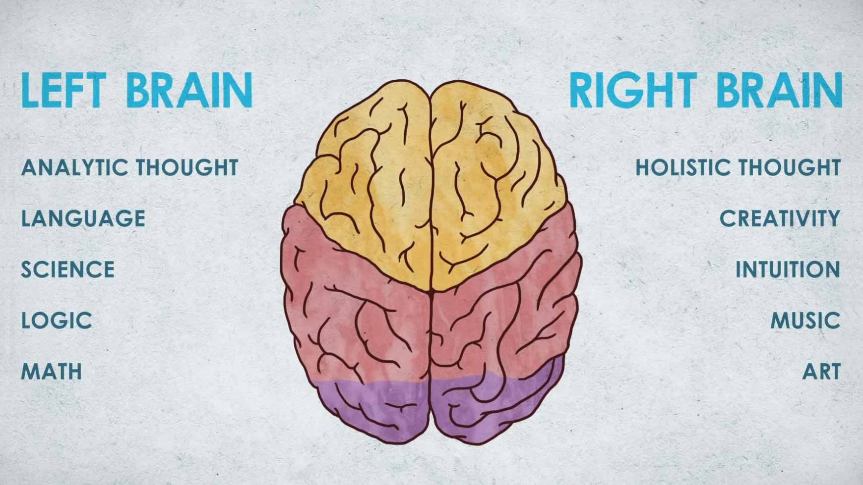 Video Dyslexia And The Brain