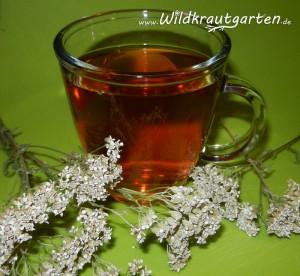 Ein Kräuter-Trank gegen den Silvester-Kater | Wildkraut-Garten