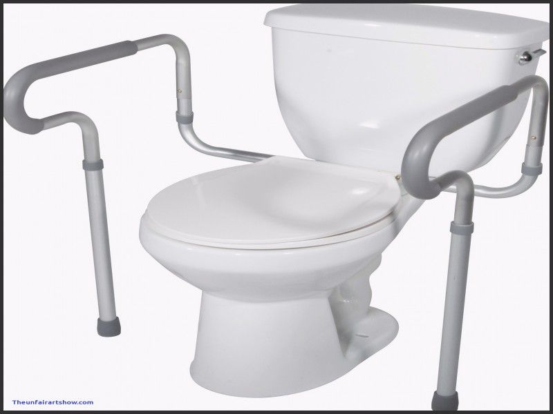 Dmi Standard Toilet Seat Riser With Arms White Home Depot