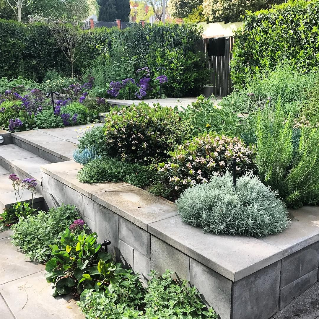369 Likes, 4 Comments   GROUNDED GARDENS (@groundedgardens) On Instagram: U201c