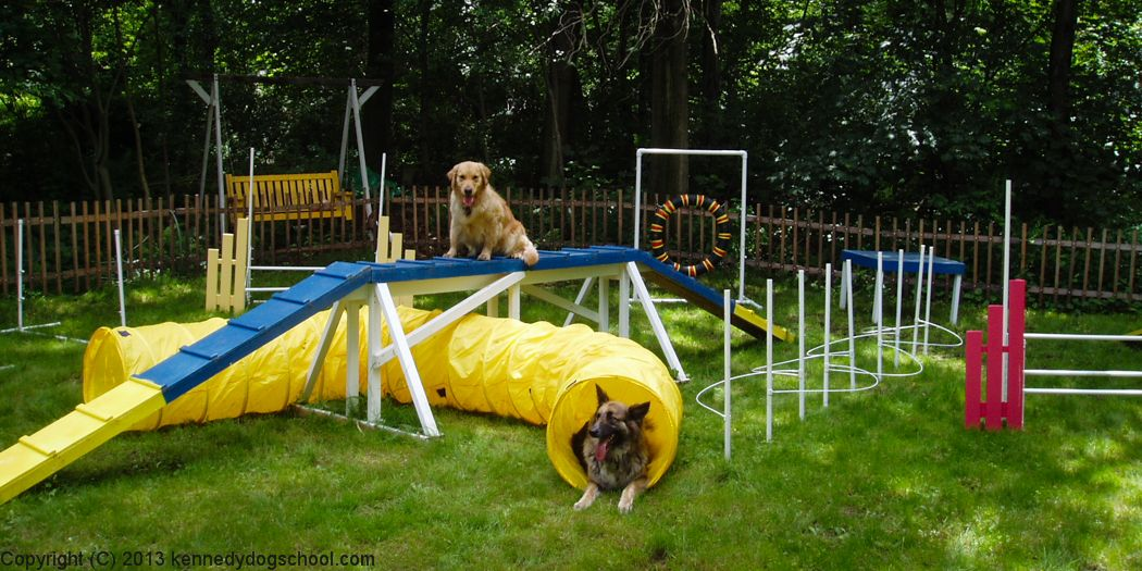 Genial Posts About Dog Agility On Kennedy Dog School - Backyard Obstacle Course For Dogs - Talentneeds.com -