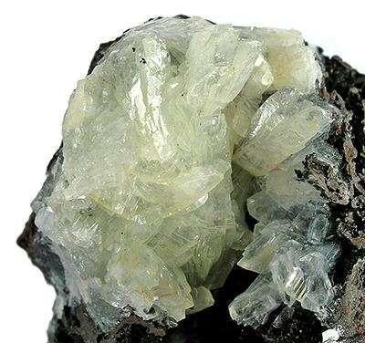 A rich spray bladed pearlescent crystals 1 1 cm length emanated dark