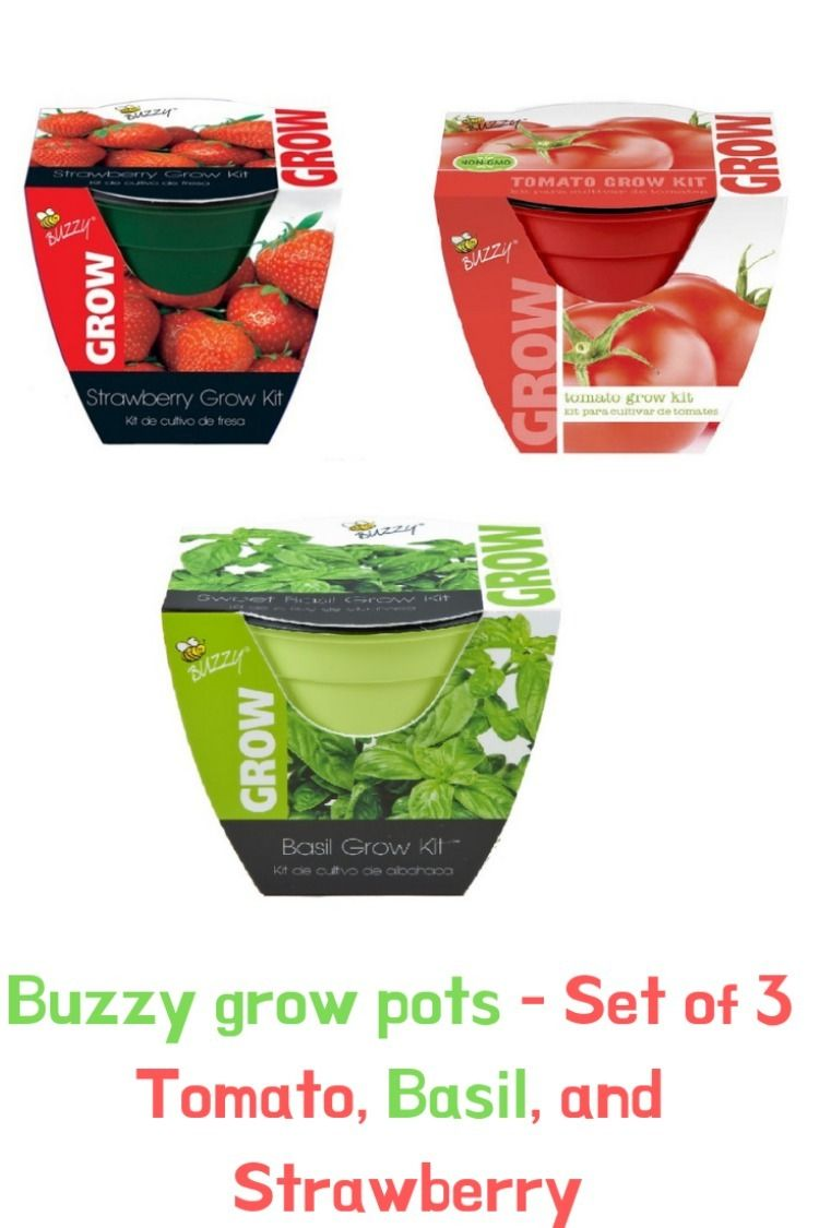 Each Buzzy Grow Pot Kit Includes A 4 Colorful Plastic Pot Seeds Growing Medium Complete Growi Growing Strawberries Grow Kit Growing Instructions