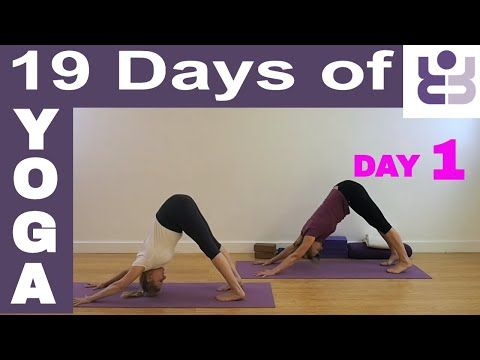 19 days of yoga  day 1 iyengar yoga sequence  youtube