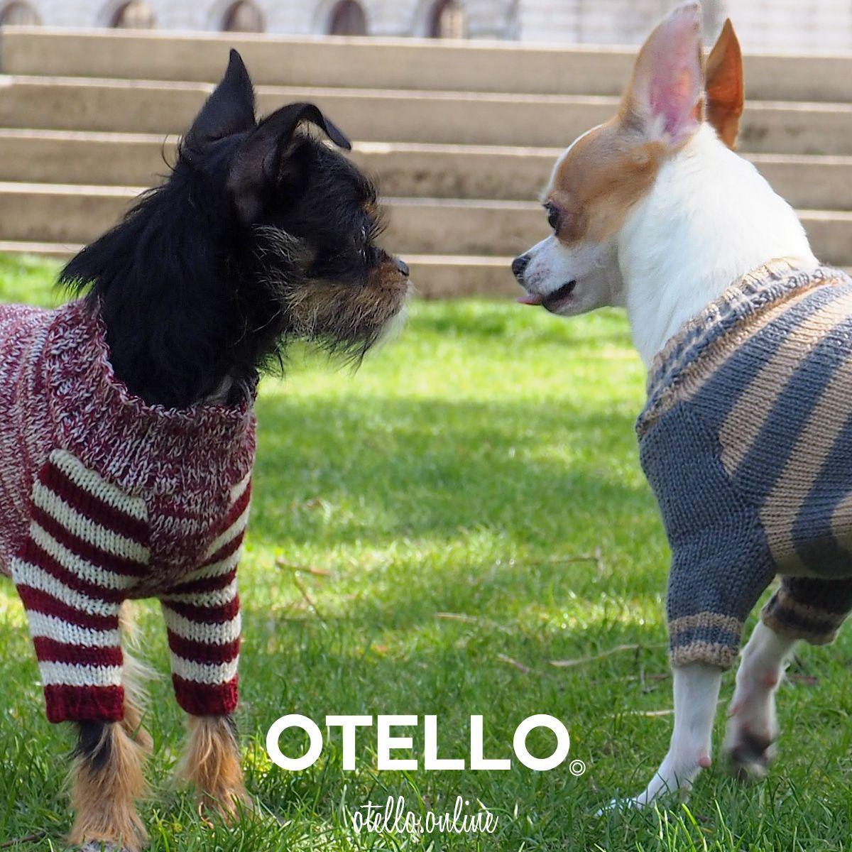 Dogs do speak OTELLO. The Dog Pullover Hunde pullover