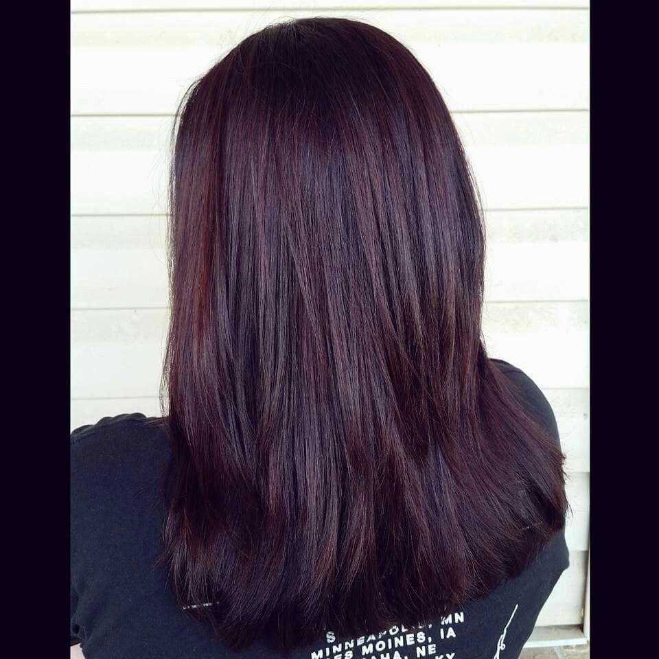Dark Violet Hair Dark Violet Hair Violet Hair Colors Burgundy Hair