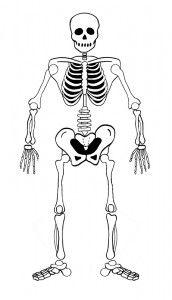 Malvorlage Skelett Halloween