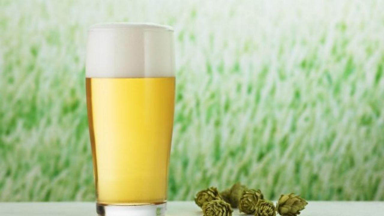 فوائد ماء الشعير بدون كحول Barley Water Alcohol Barley Benefits