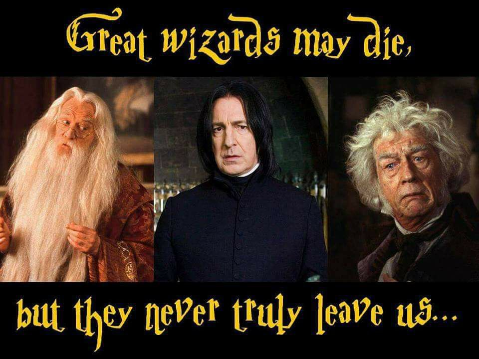 Richard Harris Alan Rickman John Hurt Harrypotter Harry Potter Love Pop Culture Wizarding World Of Harry Potter