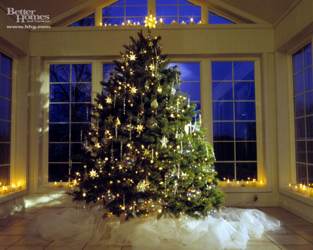 amazing christmas trees | christmas tree, christmas tree pictures