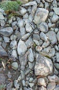 rock body