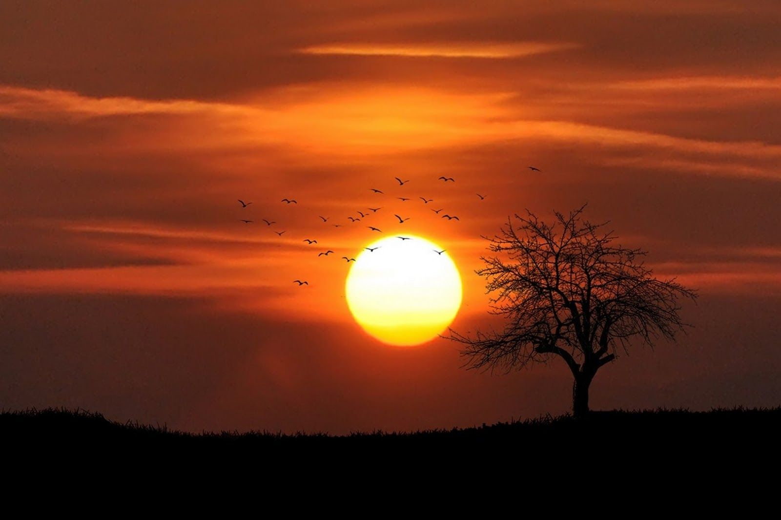 احدث صور خلفيات كمبيوتر Hd 2019 بجودة عالية Background Photography Sunset Pictures Sunset Photography Nature Sunset Photography
