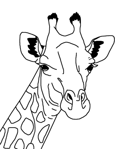 Giraffe Face Coloring page | coloring pages | Pinterest | Giraffe ...