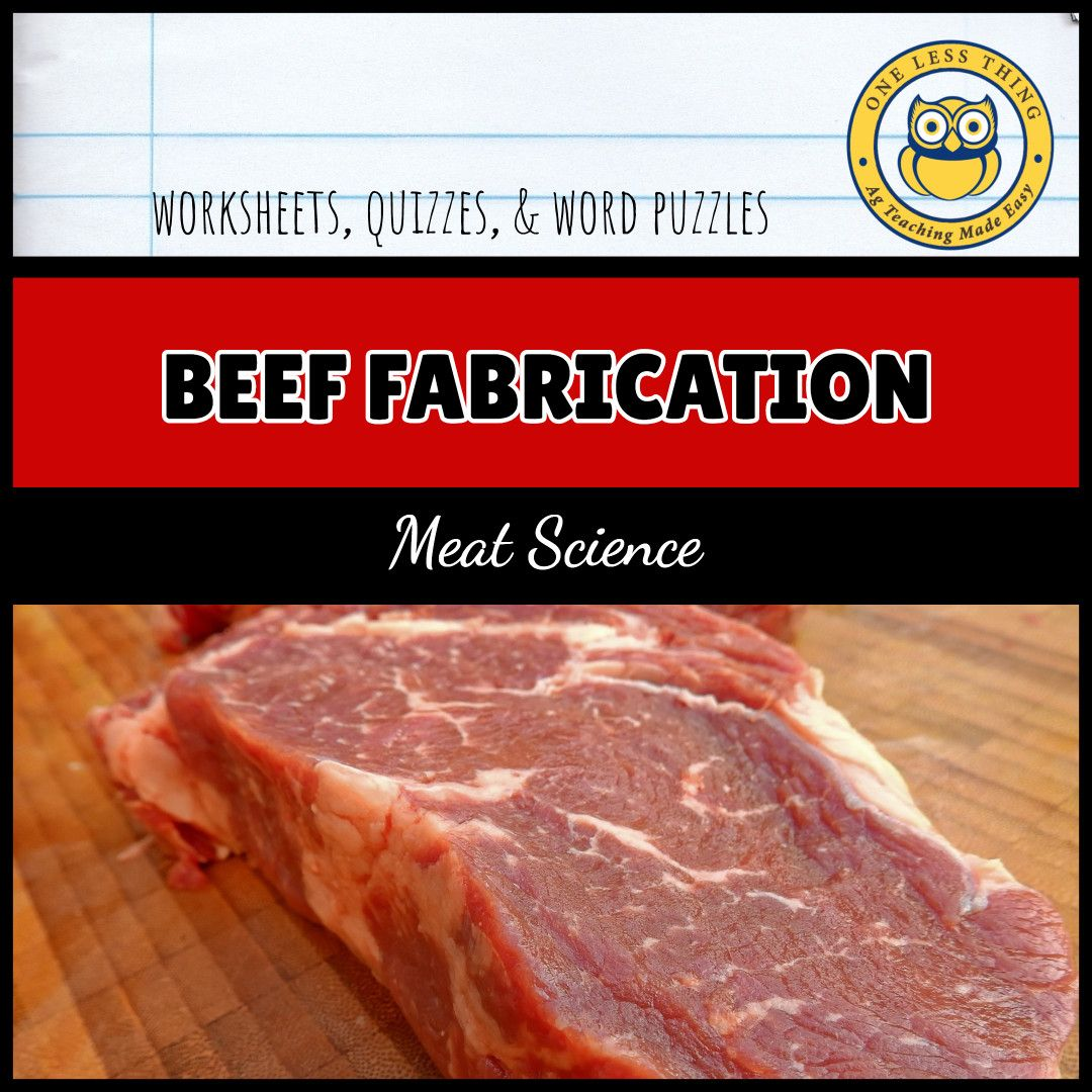 Worksheets For Meats Including Guided Notes Puzzles And