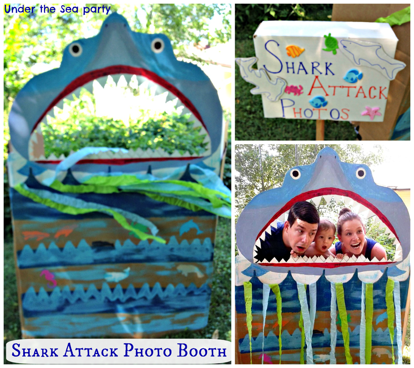 {First Birthday} Under The Sea: Decor And Games, Shark
