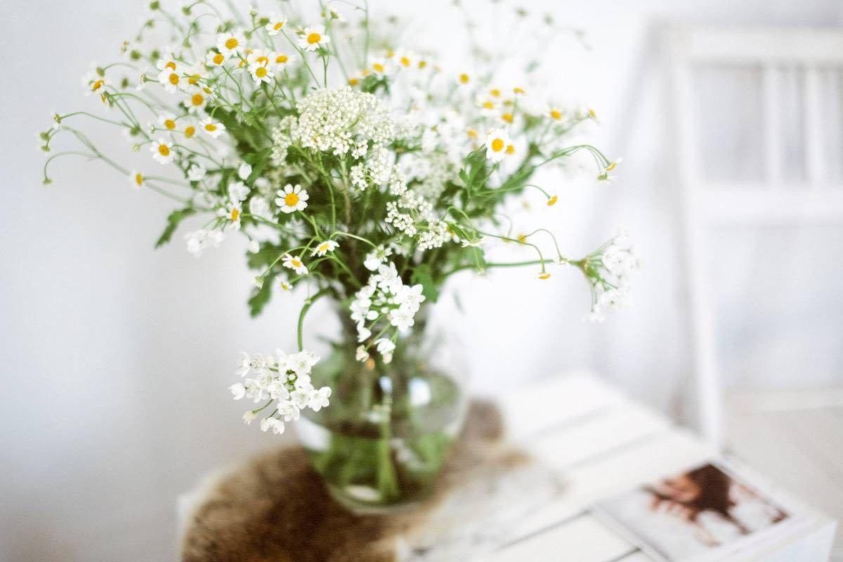 Consider the wldflwrs in nashville flower pots flower