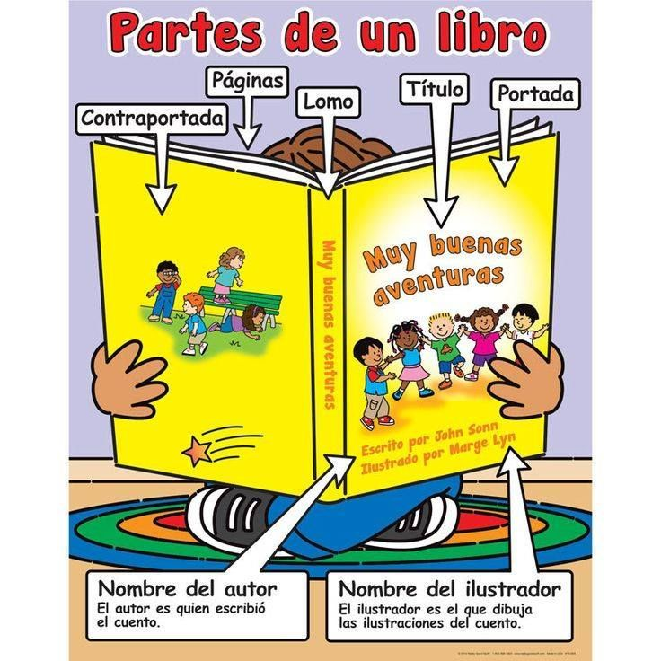 Partes de un libro actividades para educaci n primaria for Partes de una biblioteca