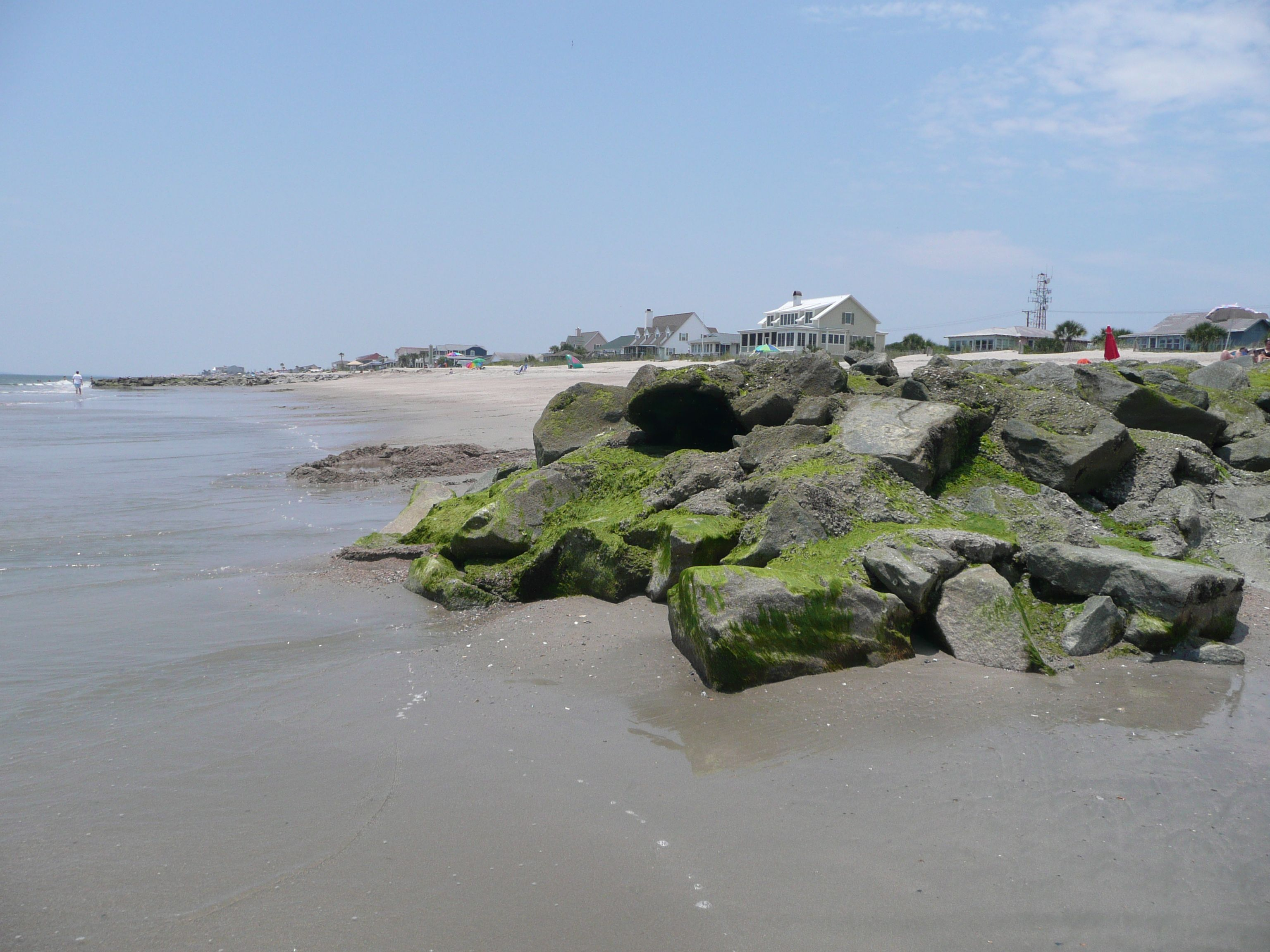 Low Tide At Edisto Beach