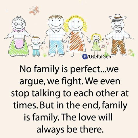 No Family Is Perfect Quote This Family Love Quotes Happy Family