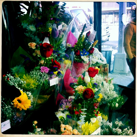 flowers in preparation for valentine's day!