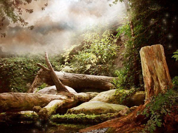 خلفيات استوديوهات Hledat Googlem Fantasy Background Background Fantasy Photography