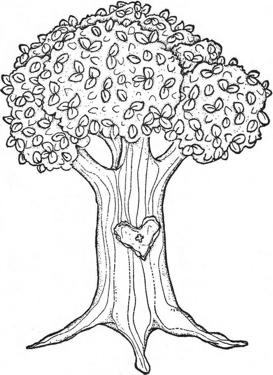 Coloring Pages Apple Pattern Free Coloring Pages For Kids Tree