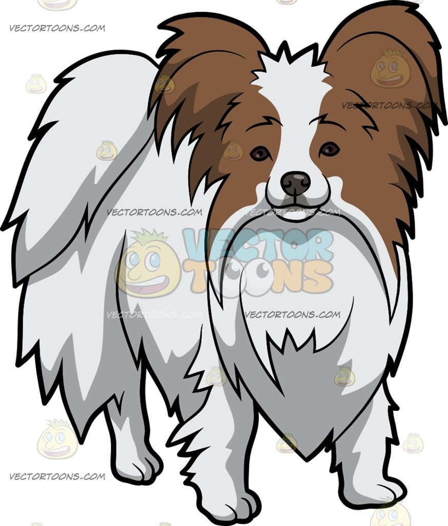 A Cuddly Papillon Dog Papillon Dog Dog Drawing Bored Dog [ 1024 x 873 Pixel ]