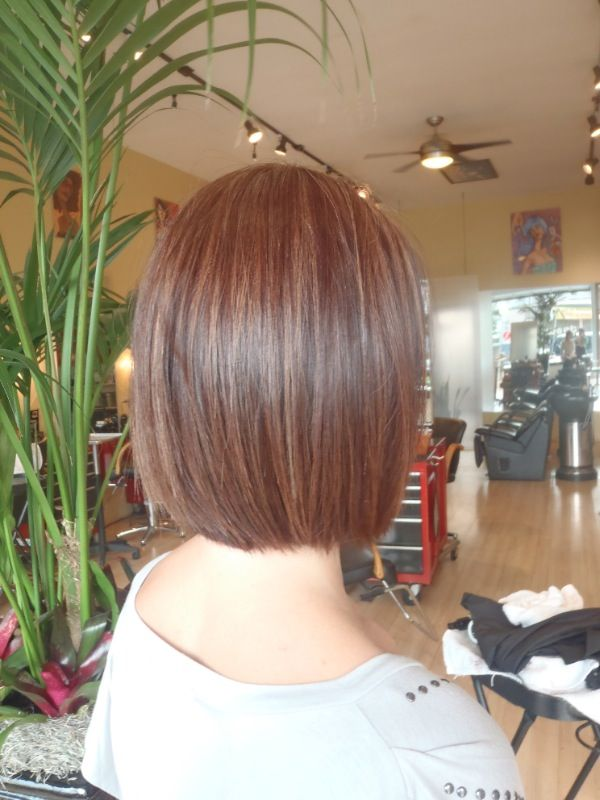 A Line Bob Back View This Would Be Cute At This Length All The Way