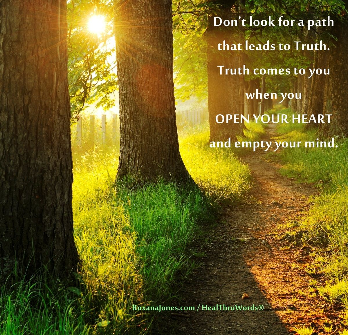 Truth Within Open Heart And Mind Inspirational Pictures Open Heart Quotes Illustration Quotes