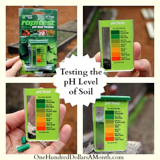 Gardening Tips   How To Test The PH Level Of Soil.