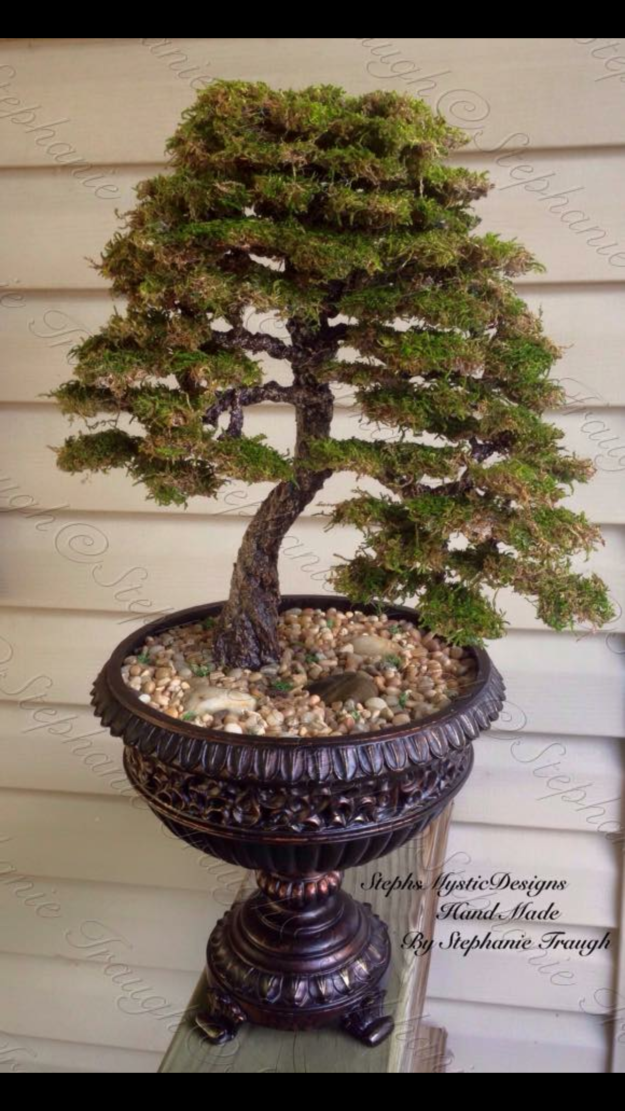 Wrapped Wire Bonsai Trees Wiring Diagram Land Wisteria Pin By Stephsmysticdesigns On Pinterest Oak Tree
