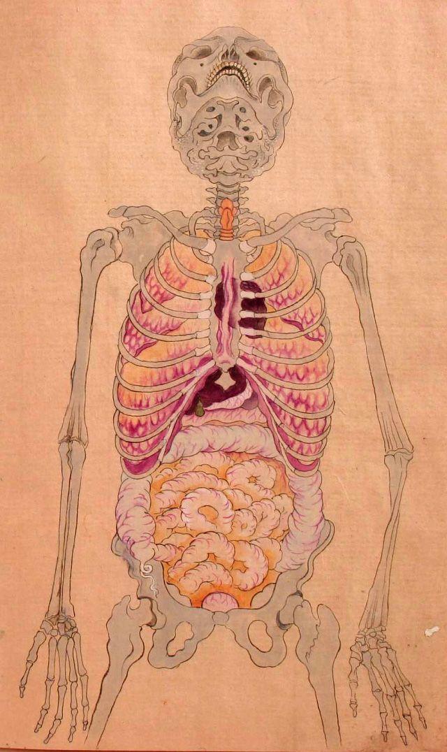 Anatomical illustration from the book Kanshin Biyō, by Bunken Kagami ...