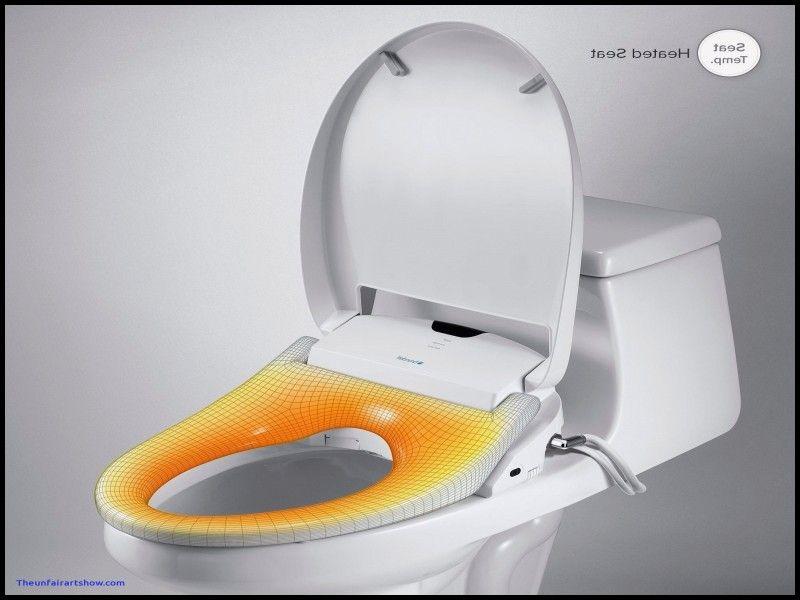 Bidet Toilet Seat Costco لم يسبق له مثيل الصور Tier3 Xyz
