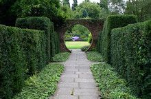 hedges are a nice touch