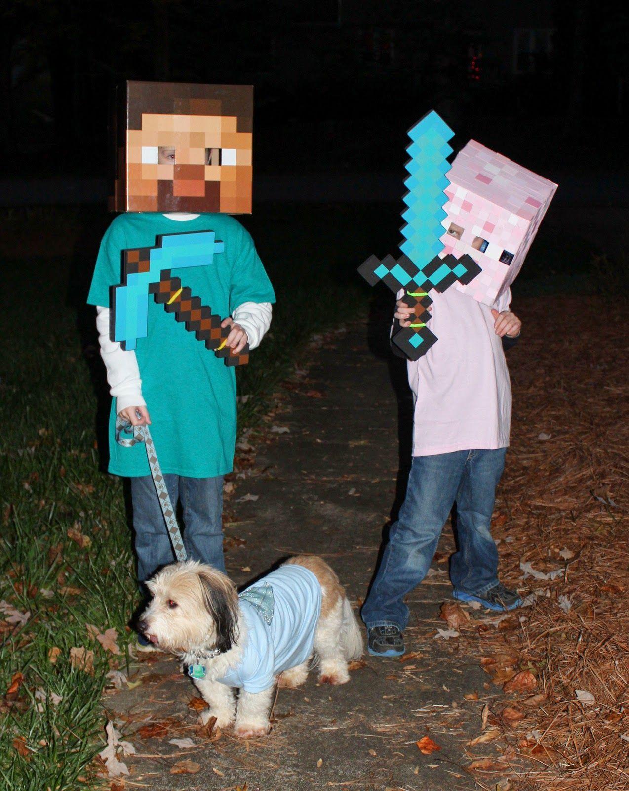 Harris Sisters GirlTalk DIY Minecraft Pig and Minecraft Diamond Dog Costumes & Shine Bright Like a Diamond | Halloween costumes