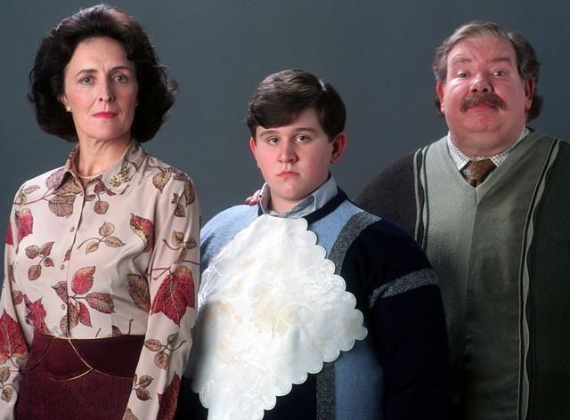 Dursley Family Harry Potter Quiz Harry Potter Film Harry Potter