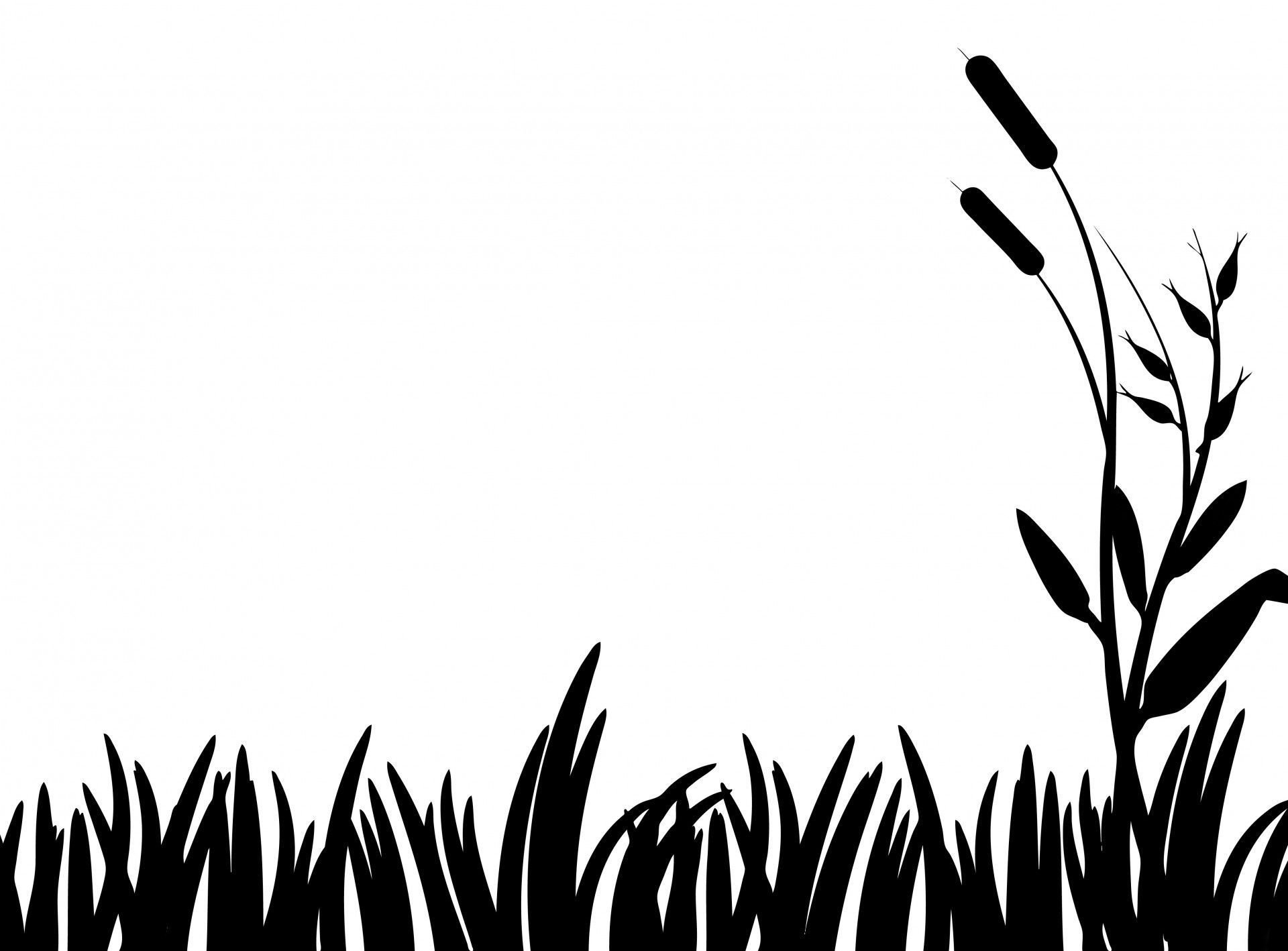 Grass Silhouette Clipart Free Stock Photo