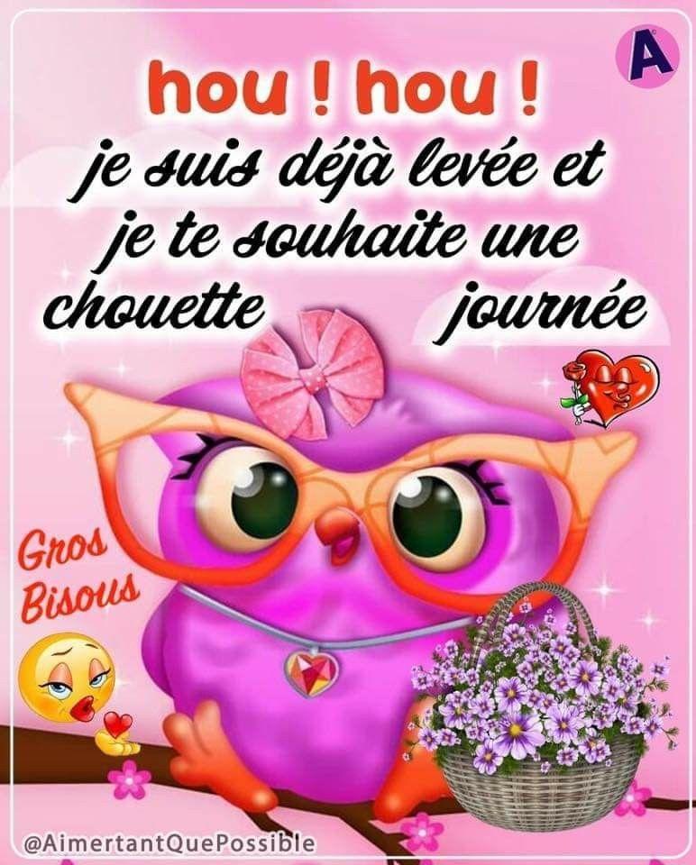 Epingle Par Christiane Leclerc Sur Maman Bonjour Humour Bonne Journee Humour Bonjour Drole