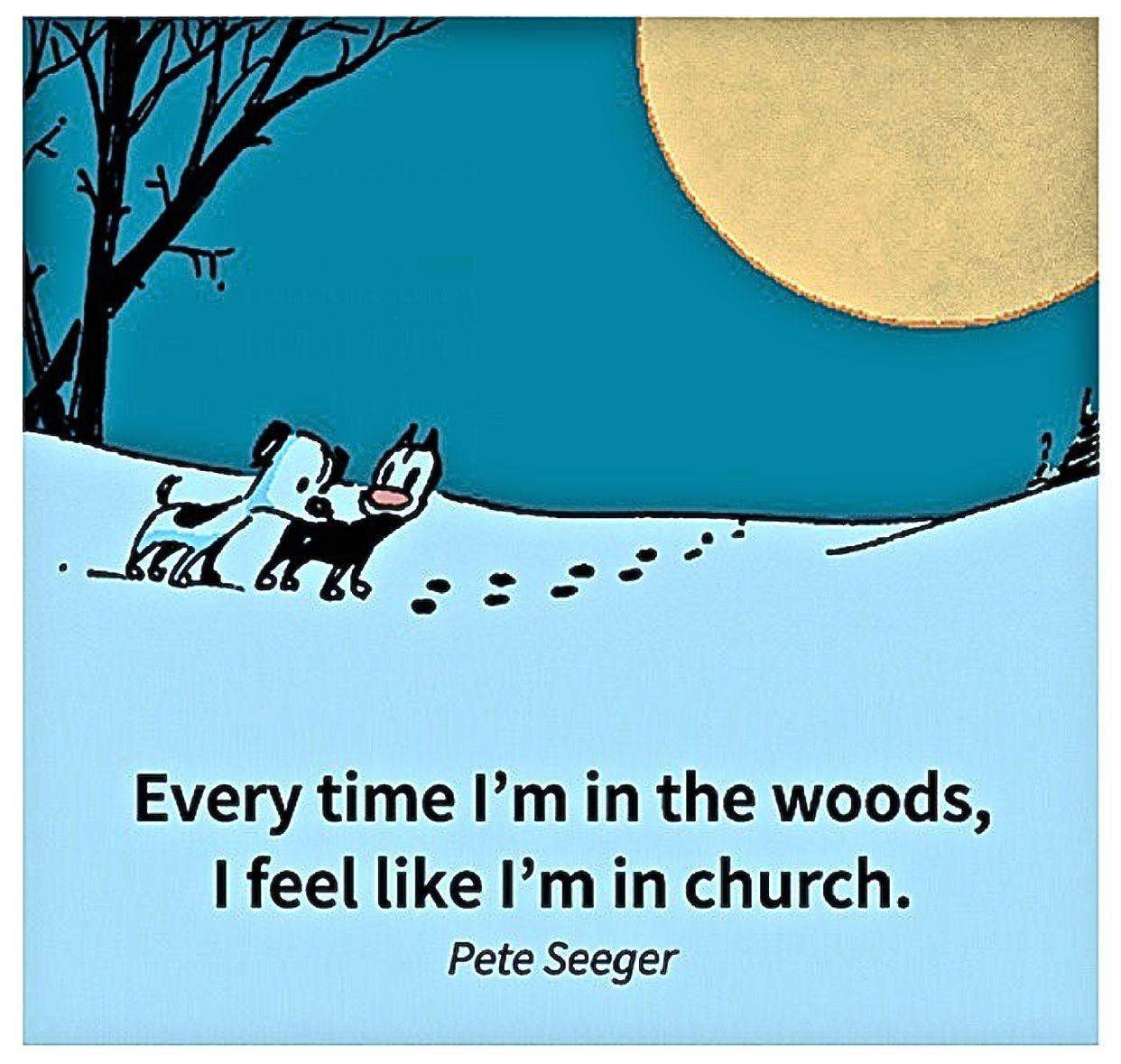 Every Time I'm In The Woods... I Feel Like I'm In Church ~ Pete Seeger .... Mutts