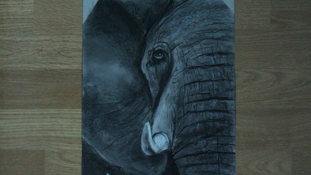Speed painting: Elephant · GloriLand Cuadro rápido, tecnica carboncillo