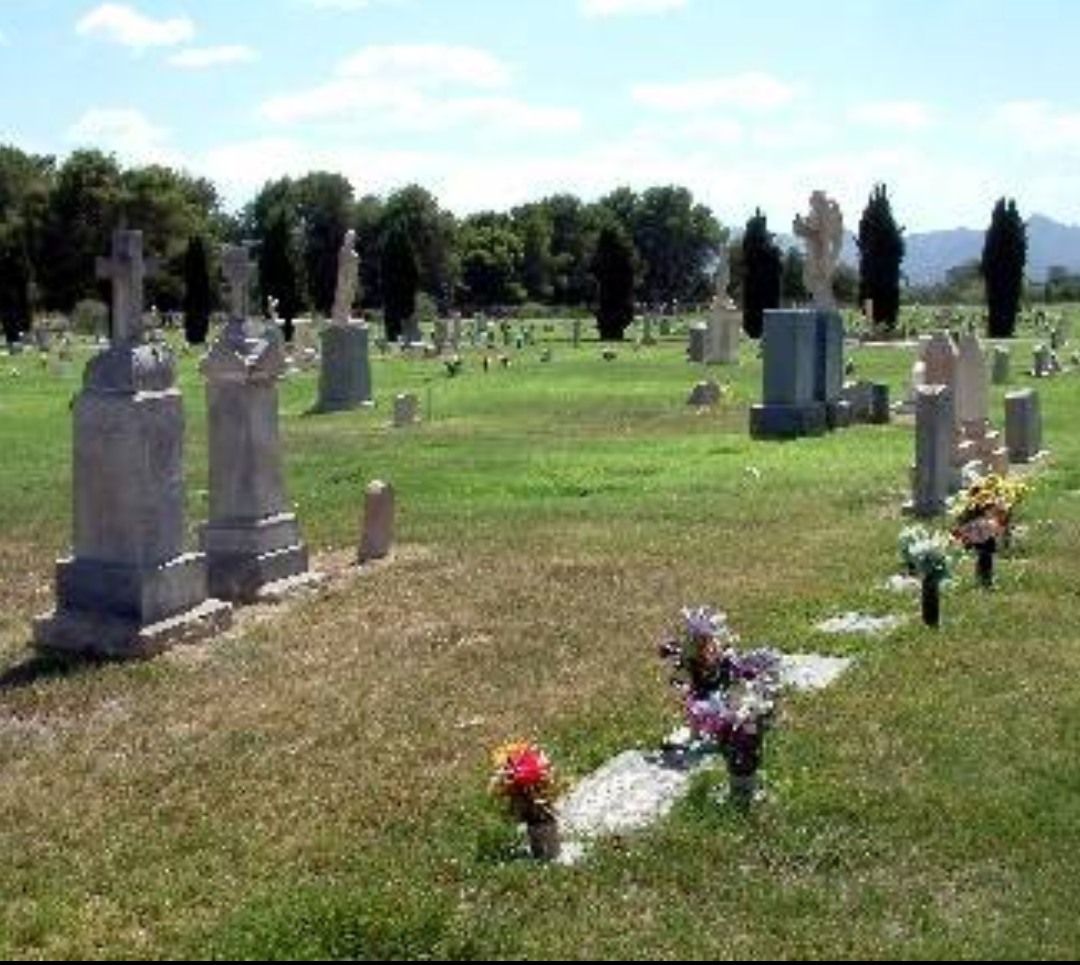 bb8ea4c60c16f554a2a4c18671d9fa04 - Beth Israel Cemetery Woodbridge Memorial Gardens