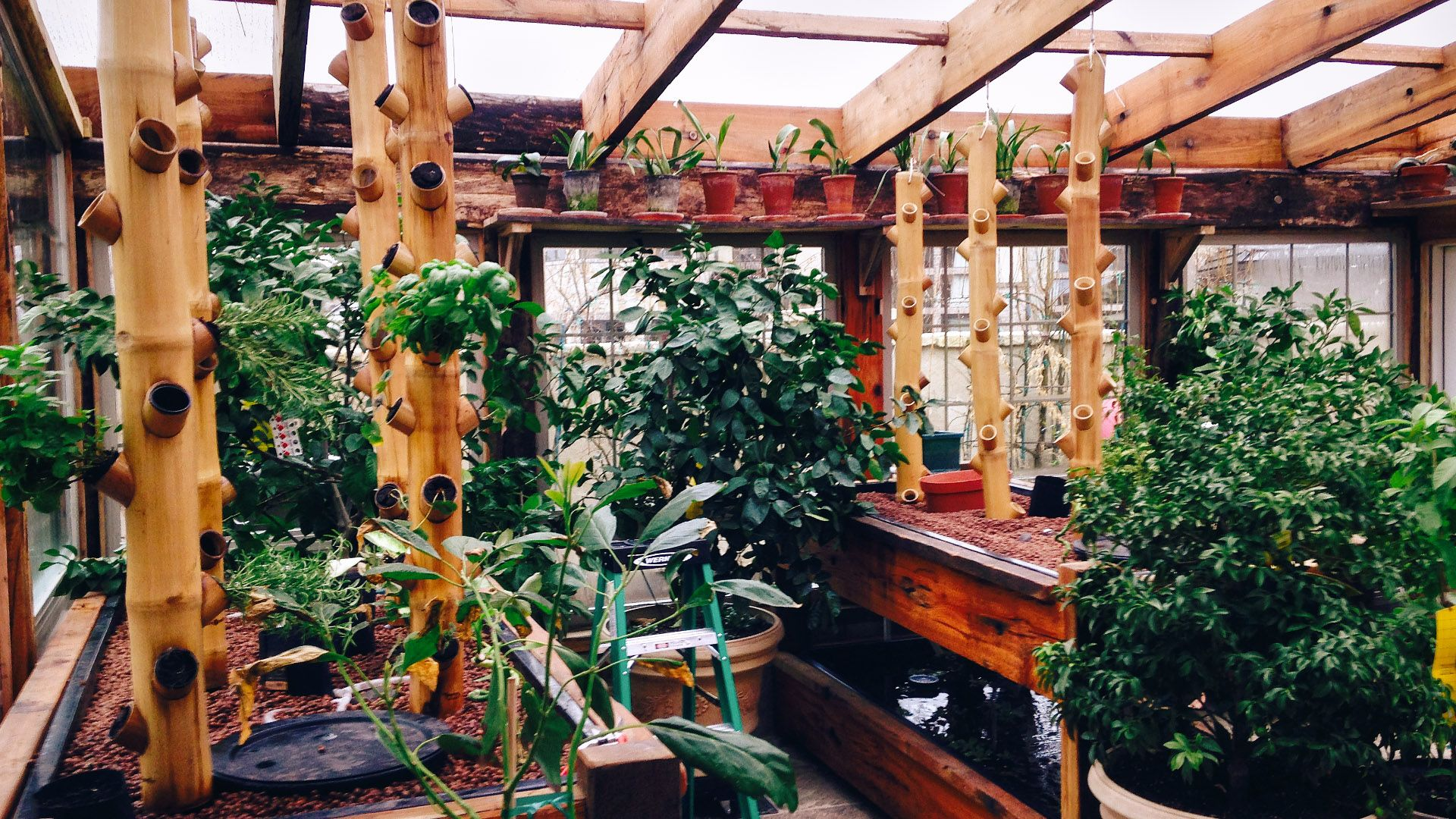 AquaPonics Greenhouse With BooGardens™ Hand Crafted Bamboo Vertical  Gardening Towers