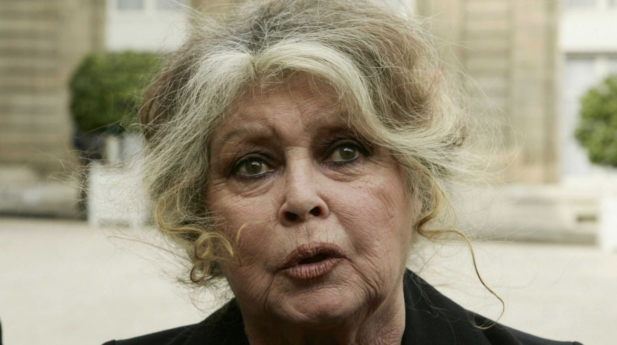Brigitte Bardot Is The Latest French Actress To Speak Out Against The Metoo Movement She Calls The Movement Hypocritic Brigitte Bardot Bardot French Actress