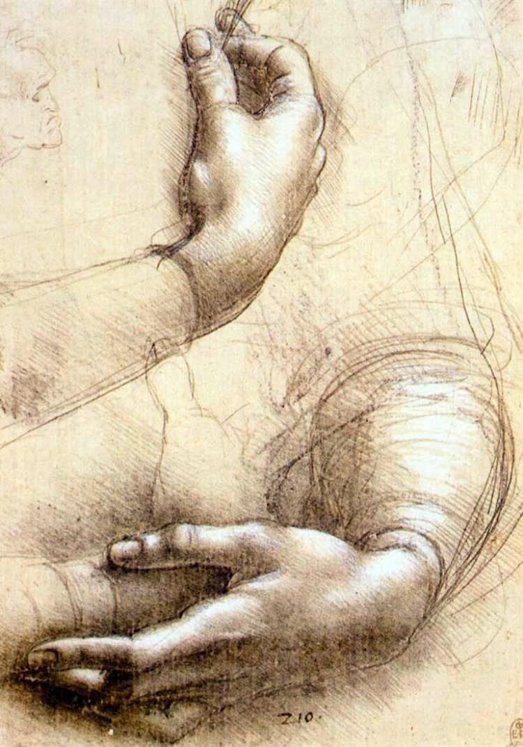 Study of hands by Leonardo daVinci | something to pin | Pinterest ...