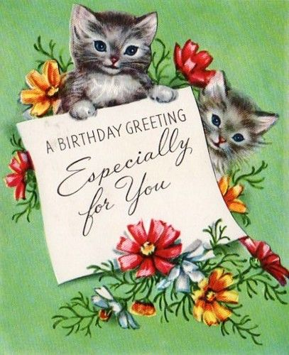 Birthday Card Kittens