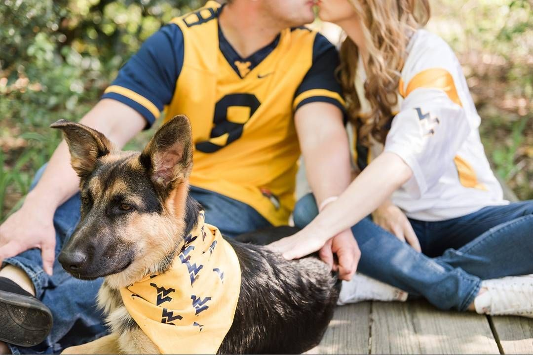 The Only Thing Better Than Mountaineer Dogs Is A Mountaineer
