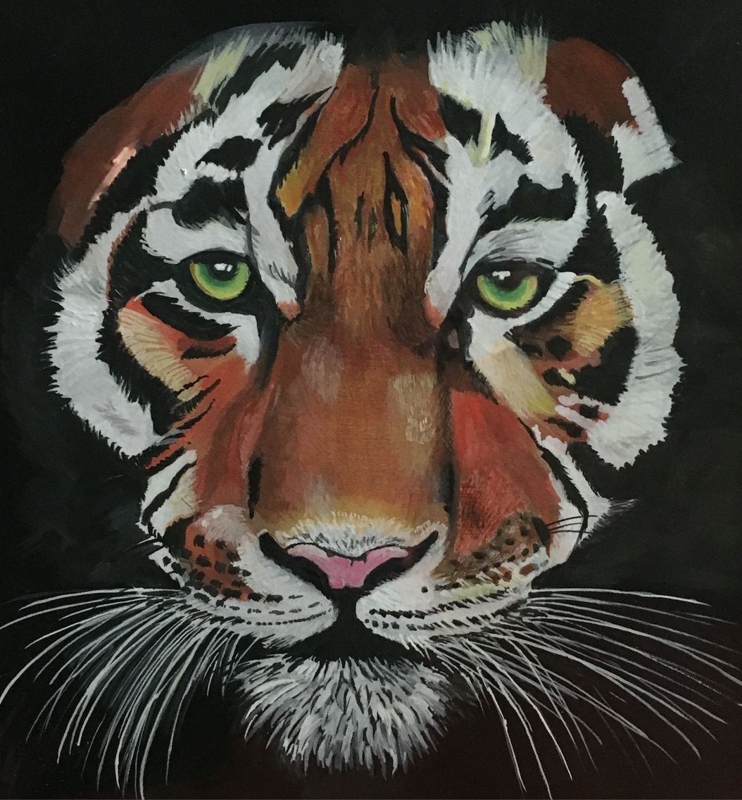 Tiger, tiger, burning bright. Gouache on paper.