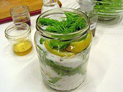 Sirup z výhonků jehličnanů (smrk, borovice) za studena s citronem